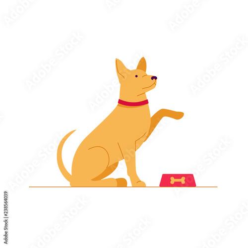 Poster de jardin Chambre bébé Sitting dog asks for food. Color vector illustration