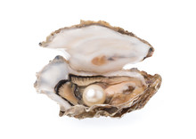 Open Oyster With Pearl Isolate...
