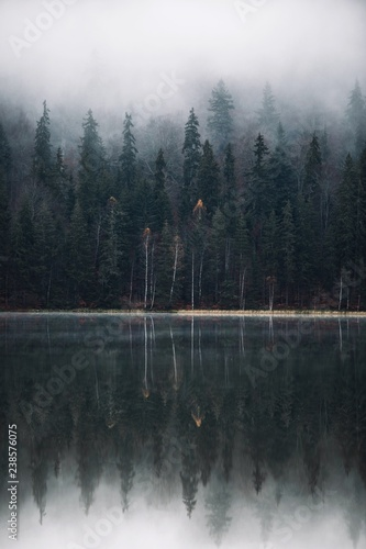 Spoed Foto op Canvas Grijze traf. Beautiful foggy autumn forest,trees reflection on lake.