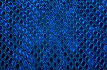 Snake Skin Background. Blue Color.