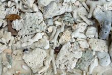White Broken Dead Coral Beach Nature Background In Thailand Sea.