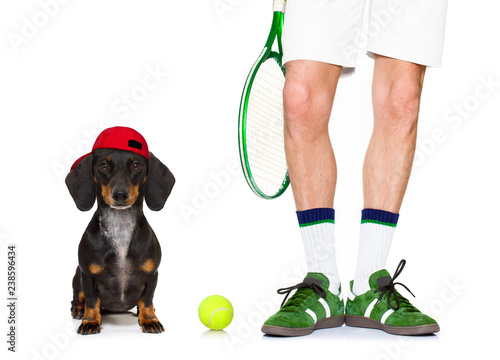 Foto op Aluminium Crazy dog dog tennis ball player