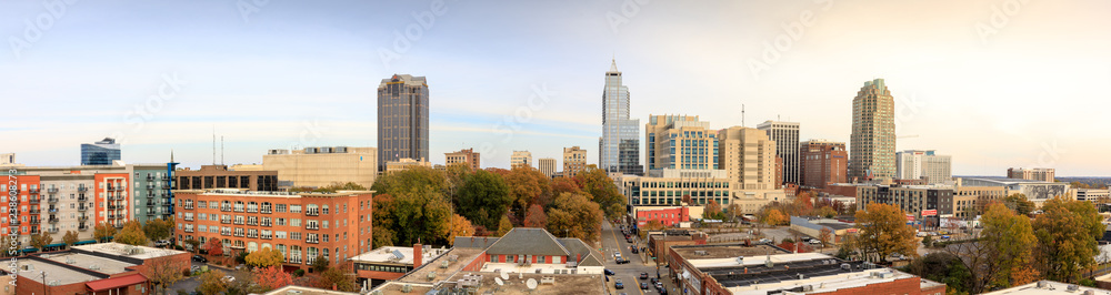Fototapety, obrazy: Panorama view of downtown Raleigh Skyline