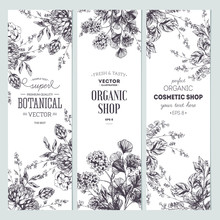 Floral Banner Collection. Orga...