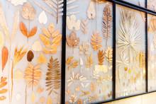 Big Herbarium On The Wall