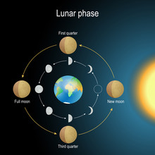 Lunar Phase. Phase Of The Moon