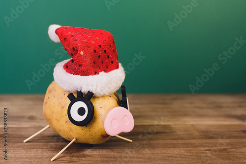Photo  piggy in christmas hat made of potato. symbol of 2019