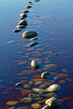 Sunlit Stepping Stones In Water