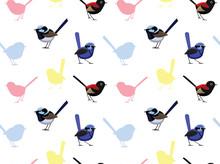 Bird Fairy Wren Wallpaper
