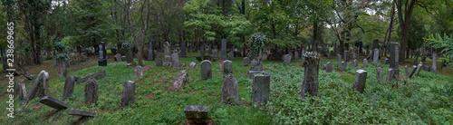 Foto op Canvas Begraafplaats Der Zentralfriedhof in Wien