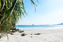 Beautiful, Scenic View Through Palm Tree Leaves Of Cheung Sha Beach On Lantau Island In Hong Kong