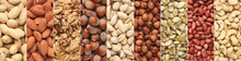 Collage Of Different Nuts In Rows, Top View