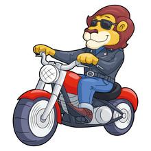 Lion Riding Motorbike
