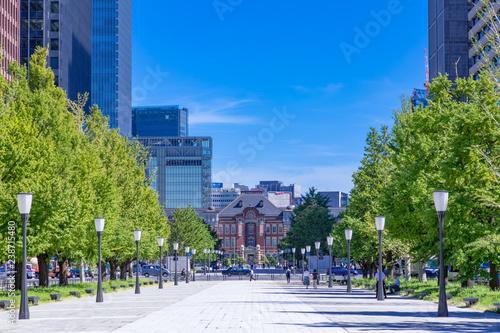 Fotografie, Obraz  (東京都ー都市風景)青空の下の東京駅とビル群7