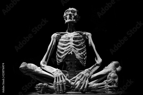 Foto  human skeleton people isolated black white art model medicine horror