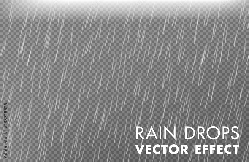 Fototapety, obrazy: Rain drops on the transparent background - Vector effect 2