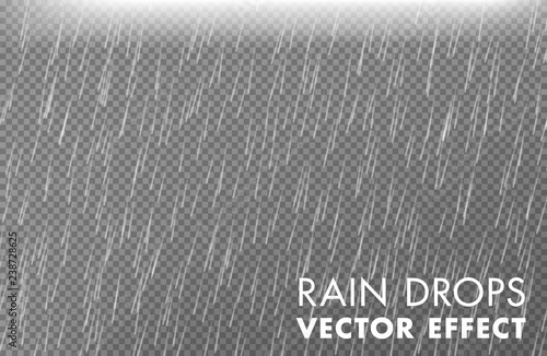 Stampa su Tela Rain drops on the transparent background - Vector effect 2