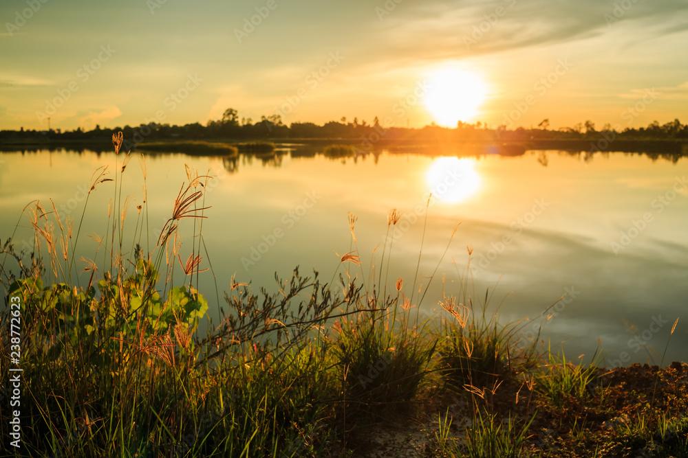 Fototapety, obrazy: sunset over the lake