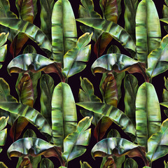 Fototapeta Eko Seamless pattern with banana leaves on a dark background. Tropical background for fabrics, wallpapers, textiles. Illustration with colored pencils.