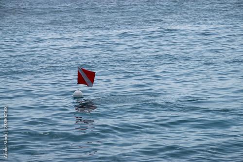 Fotografie, Tablou diving flag in the sea