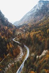 Pusta droga z drzewami i górami w oddali