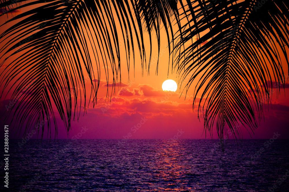 Fototapeta Summer tropical background. Sunset at the Ocean