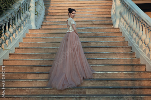 Beautiful lady in luxurious ballroom dress walking up the stairs of her palace Canvas Print