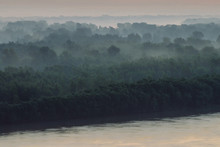 Mystical View On Riverbank Of Large Island With Forest Under Haze At Early Morning. Mist Among Layers From Tree Silhouettes Under Predawn Sky. Morning Calm Atmospheric Landscape Of Majestic Nature.