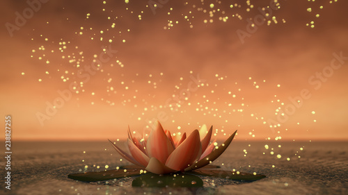 Photo  a lotus flower good for relaxation(3d rendering)