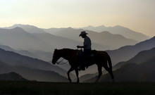 Cowboy And Horse Silhouetted A...