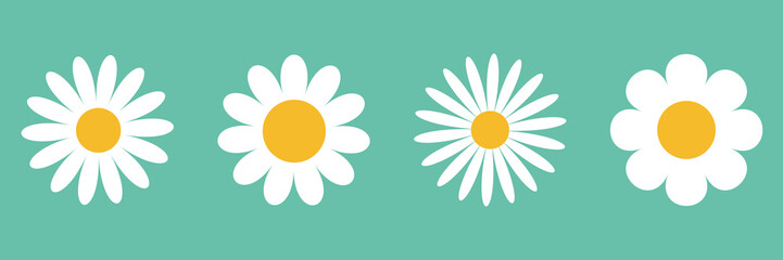 Camomile icon set. White daisy chamomile. Cute round flower plant collection. Growing concept. Love card symbol. Flat design. Green background. Isolated.