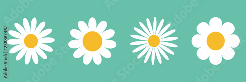 Camomile icon set. White daisy chamomile. Cute round flower plant collection. Growing concept. Love card symbol. Flat design. Green background. Isolated. #238867467