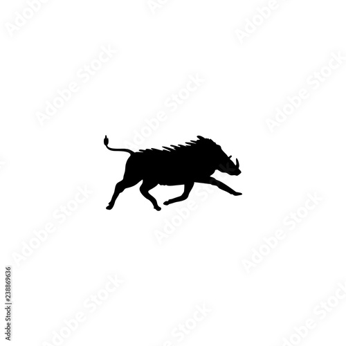 Fényképezés boar vector icon