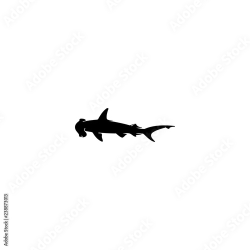 Obraz hammerhead shark vector icon. hammerhead shark sign on white background. hammerhead shark icon for web and app - fototapety do salonu