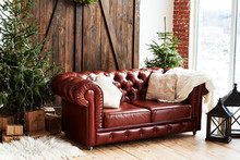 Leather Vintage Brown Chesterfield Sofa In Christmas Interior With Fir Tree And Gift Boxes In Loft Room With Wooden Door And Panoramic Window, Copy Space