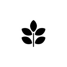 Sprout 6 Vector Icon. Sprout 6 Sign On White Background. Sprout 6 Icon For Web And App