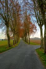 Carrefour De Routes De Campagn...