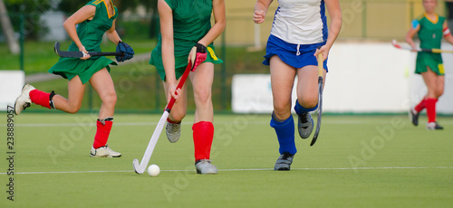 Fotografia, Obraz  Field Hockey player, ready to pass the ball to a team mate