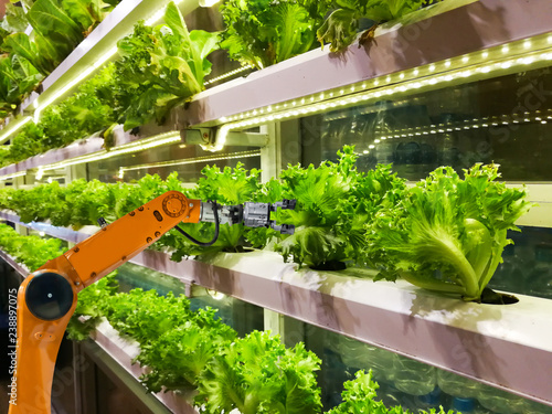 Photo  Smart robotic farmers in agriculture futuristic robot automation to vegetable fa