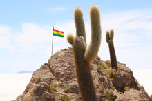 Bolivian Flag On Isla De Pescadores, Salt Lake Uyuni In Bolivia.