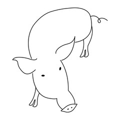 Hand drawn pig silhouette. Vector illustration on white background. Line icon