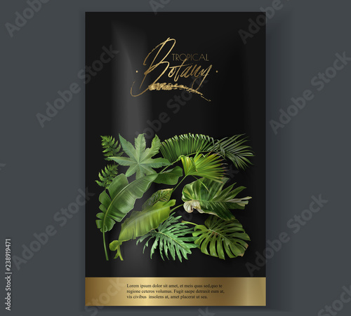 Vector Vertical Banner With Green Tropical Leaves On Black Background Luxury Exotic Botanical Design For Cosmetics Spa Perfume Aroma Beauty Salon Best For Packaging Design Buy This Stock Vector And Explore