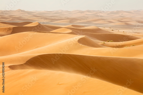 Fotobehang Droogte waves from sand dunes in desert in Morocco