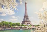 Fototapeta Fototapety Paryż - eiffel tour over Seine river