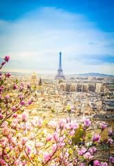 Fototapetaskyline of Paris with eiffel tower