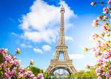 Fototapeta Fototapety z wieżą Eiffla - eiffel tower, France