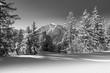 canvas print picture - Winterlandschaft mit Berg im Hintergrund in schwarz weiß