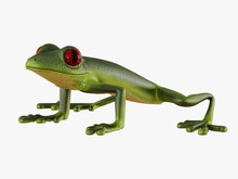 Green Frog Side View On White Background 3d Rendering