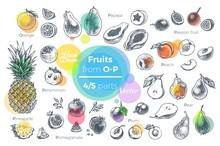 Fruits Hand Drawn Icons Set. Fresh Organic Food