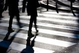 Blurry zebra crossing with pedestrians - 238972084